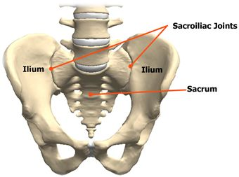 Sacroiliac Joint Dysfunction: A Clear Definition and ...